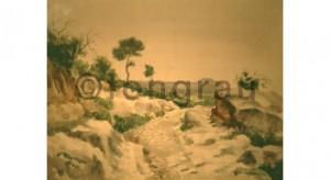 Camí dels Boverals. Mont-roig